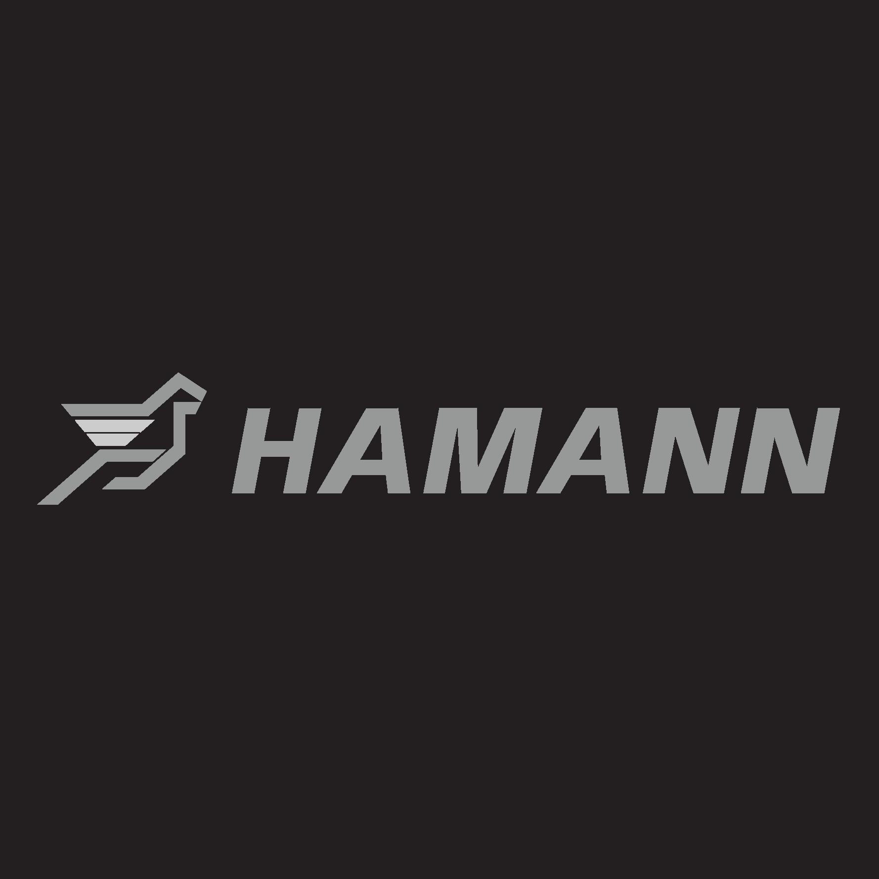 www.hamann-motorsport.com