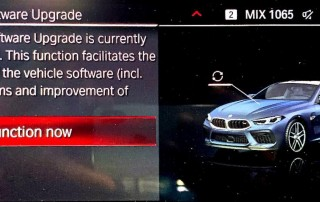 Disable remote software upgrade for BMW-5